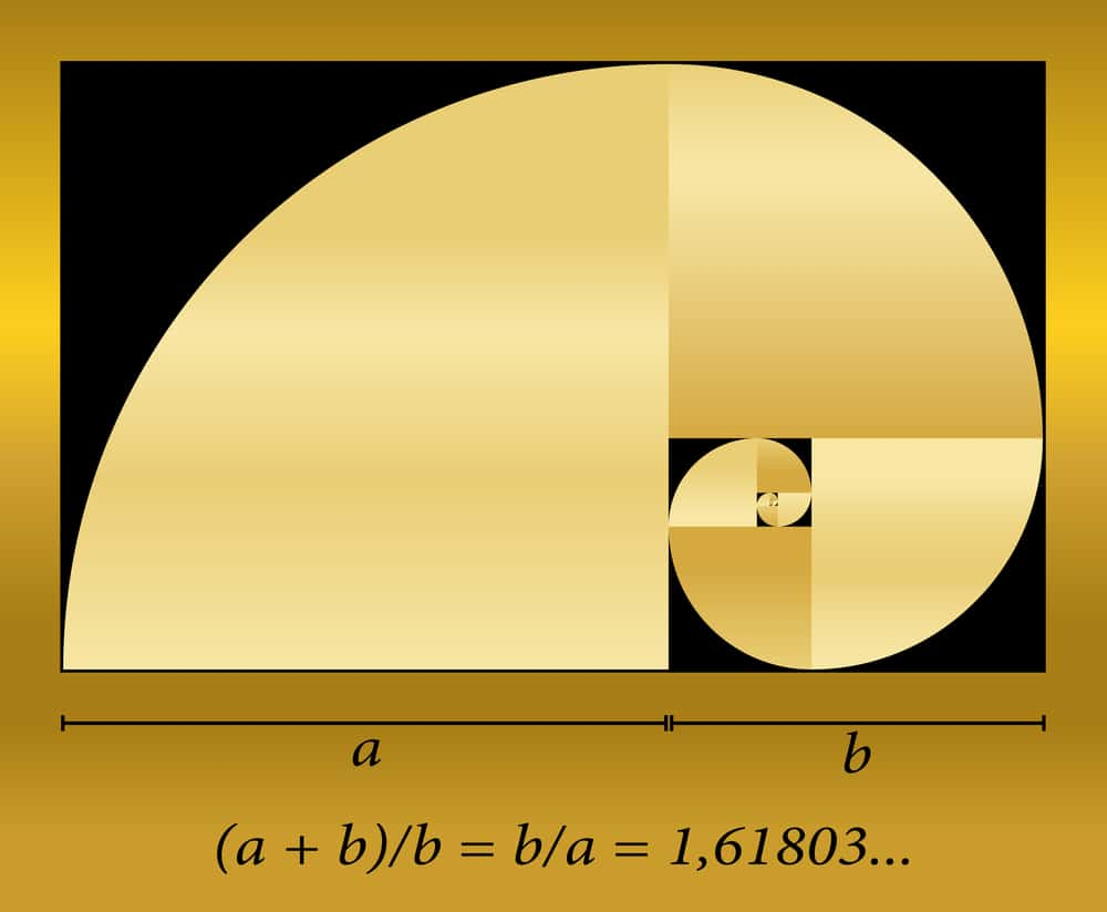 Golden Cut Spiral